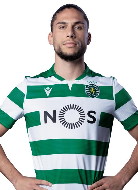 Pedro Manuel Lobo Peixoto Mineiro Mendes